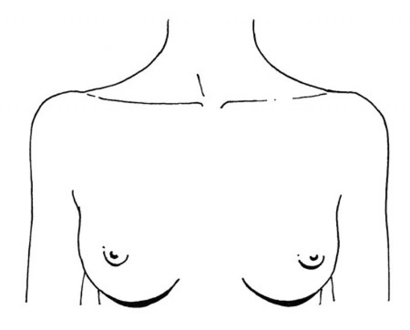Вагинальной дырки зачем парню нужно знать размер груди девушки попку компании бразерс